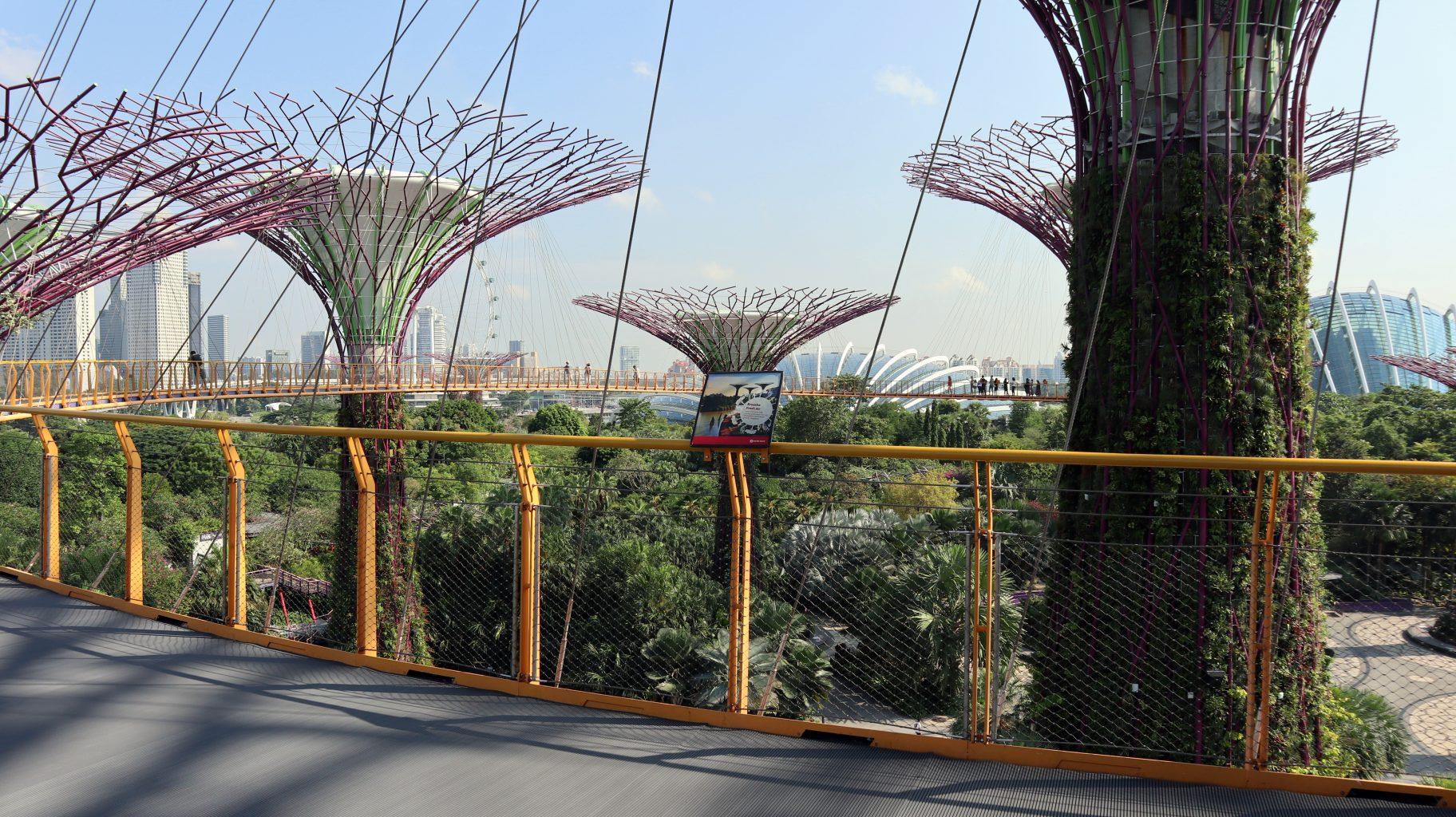 Pasarela OCBC Skyway