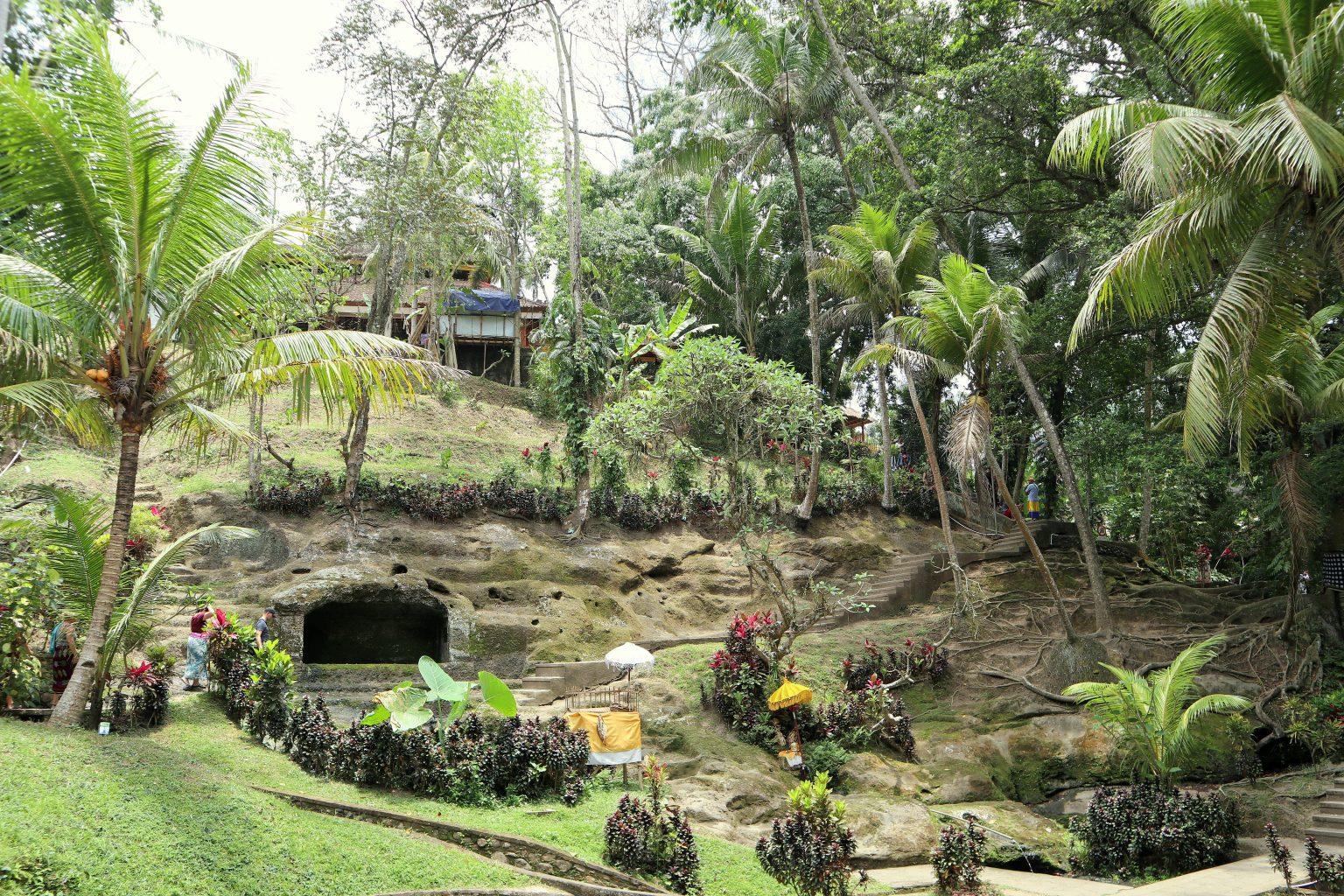Vegetación en Goa Gajah