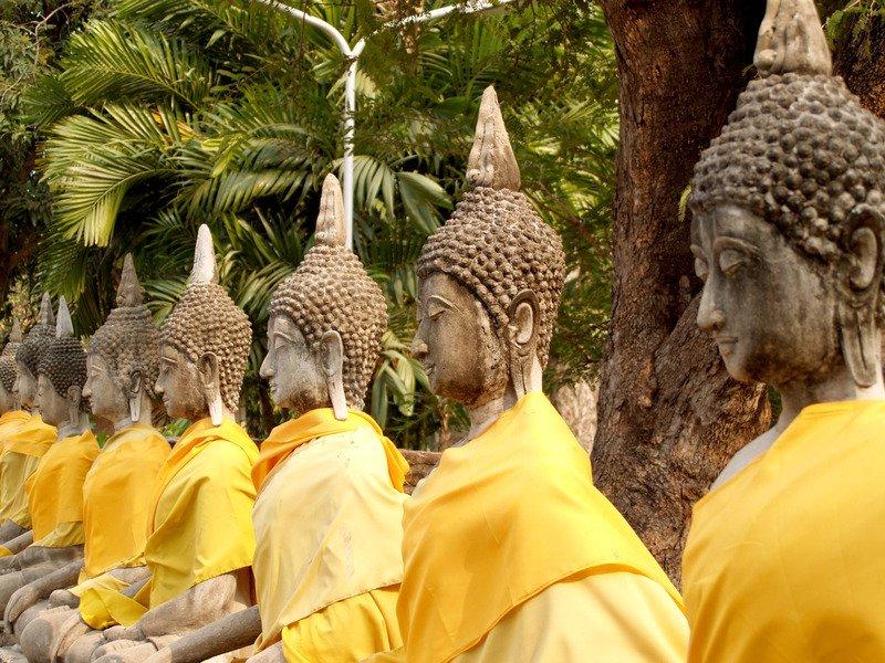 Budas. Consejos para no cometer errores culturales en Tailandia