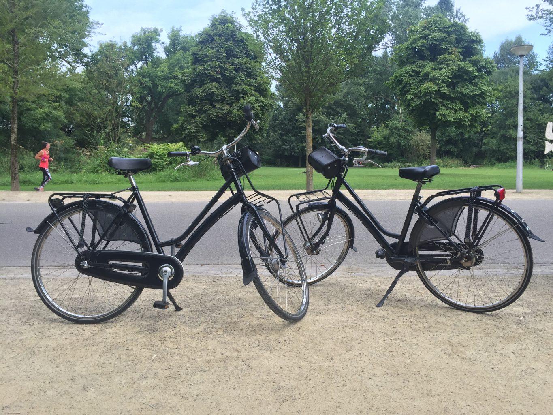 Nuestras bicicletas de alquiler en Voldenpark. Qué ver y hacer en Ámsterdam