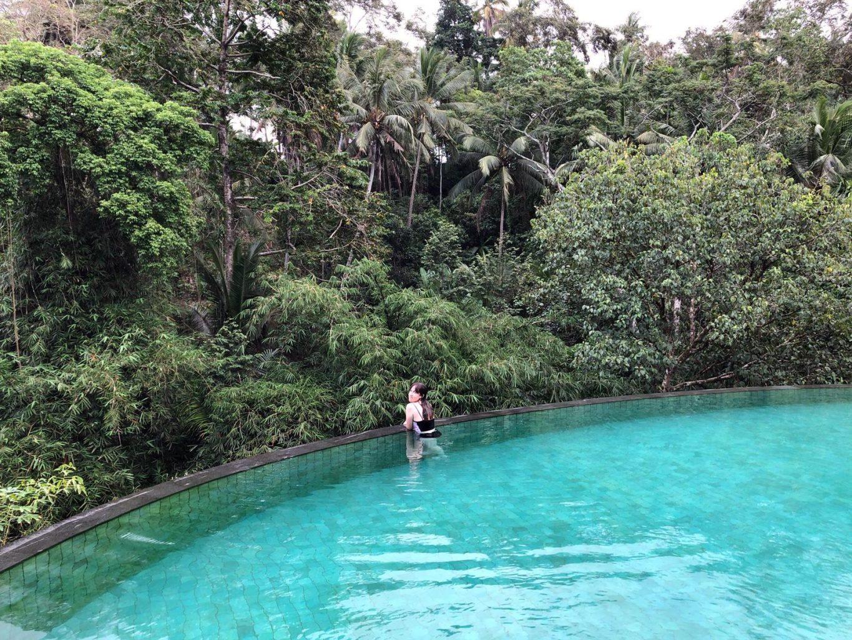 Piscina del Pertiwi Bisma 1. Dónde alojarse en Bali