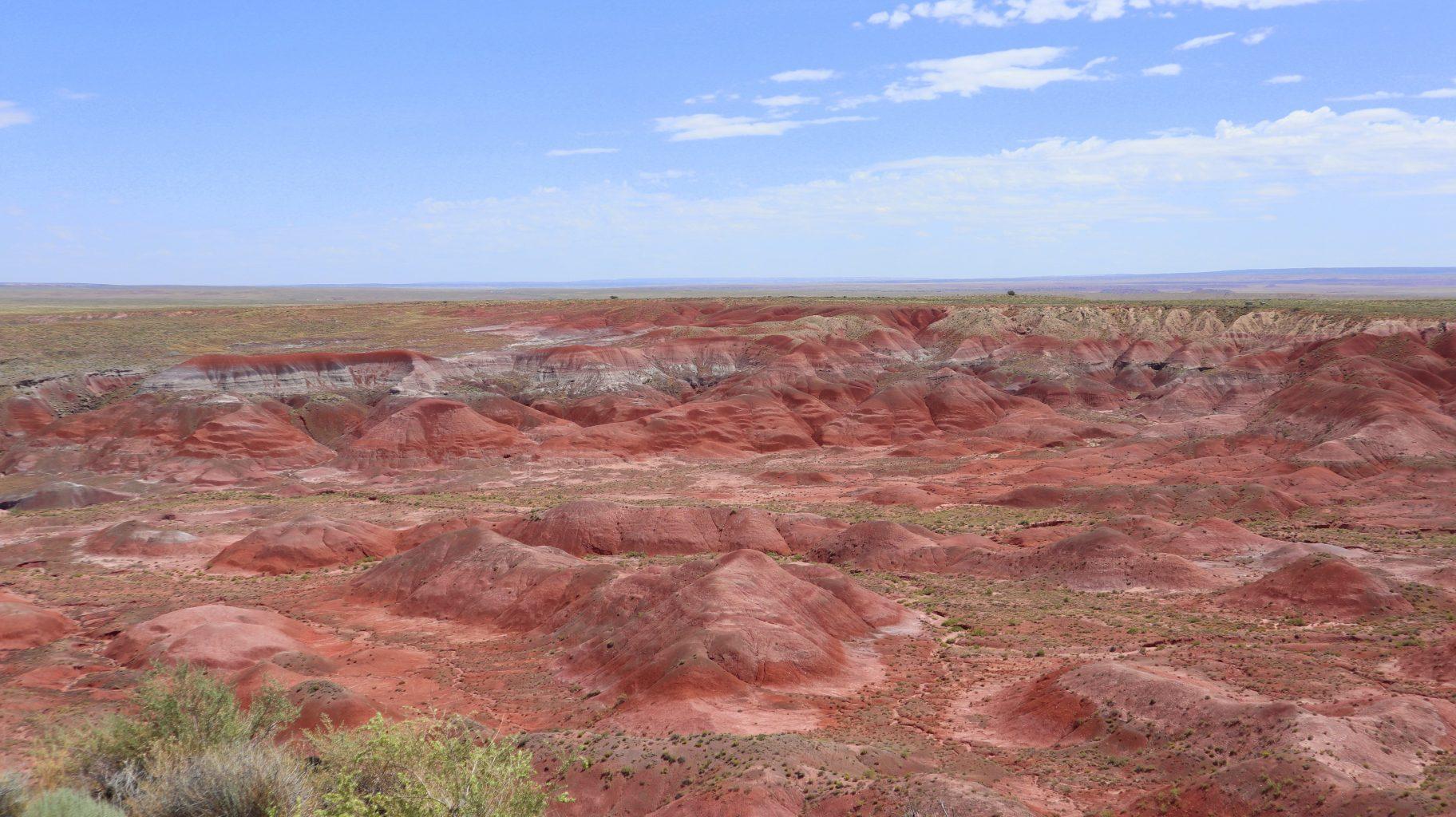 Painted Desert. Visitar el Petrified Forest