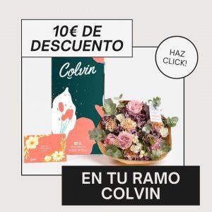 DESCUENTO COLVIN