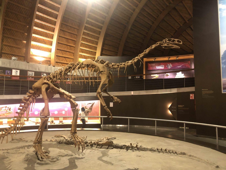 Sala del Triásico. Visitar el museo Jurásico de Asturias